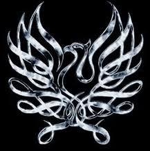 Phoenix Risen